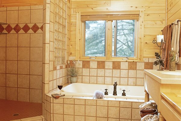 Master bathroom shower and soaker tub