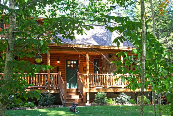 exterior view of log home surrounded by trees and with dog laying in front yard