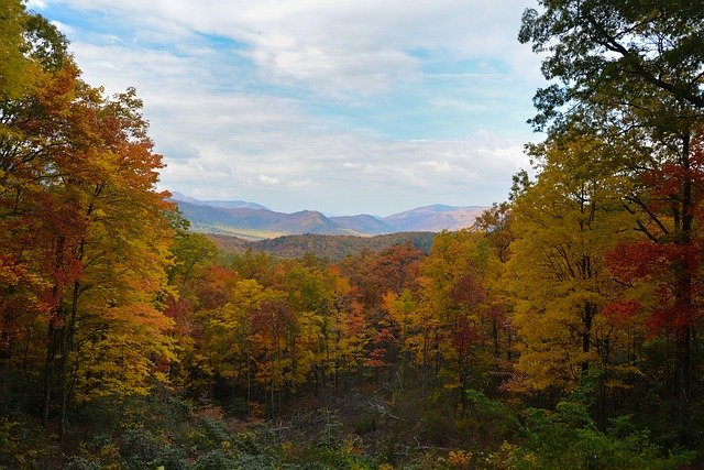 7 Reasons to Build Your Log Cabin In Sevierville, TN